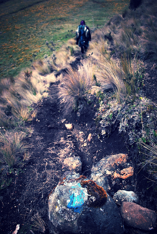 Tres Cruces route in Cajas.