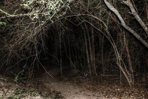 Haunted hiking trail