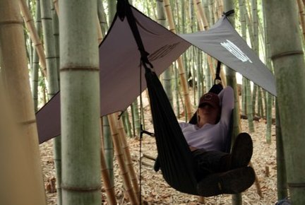 hammocks for backpacking